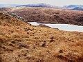 Loch na Beirighe, Isle of Lewis - geograph.org.uk - 135927.jpg