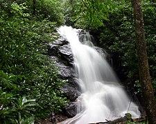 Log Hollow Falls.jpg