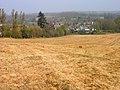 Looking Down on Peasmarsh - geograph.org.uk - 400209.jpg