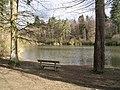 Louisa lake, Bedgebury Forest. - geograph.org.uk - 347842.jpg