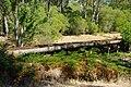 Ludlow forest gnangarra 10.JPG