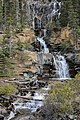 MK04443 Tangle Creek Falls (Jasper NP).jpg