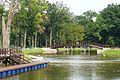 MOs810, WG 2014 39, Milicz Ponds Krosnice pond (218).JPG