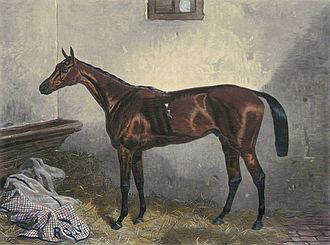 Macaroni (horse) - Macaroni, painted by Harry Hall in 1863.