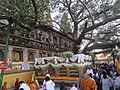 Mahabodhi temple and around IRCTC 2017 (75).jpg