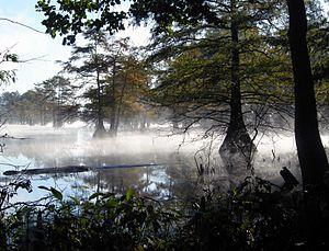 Texas - Steinhagen Reservoir