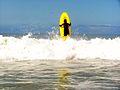 Menino faz surf na praia.JPG
