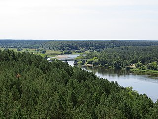 Varėna District Municipality Municipality in Dzūkija, Lithuania