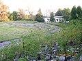 Metallurgov Stadium (bushes) - panoramio.jpg