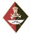 Mewar Bhil Corps Insignia.png