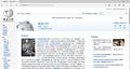 Microsoft Edge Chinese Wikipedia.png