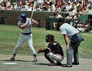 Mike Sadek - Sadek behind the plate in a game against the Cubs.