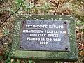 Millennium Plantation - geograph.org.uk - 1579632.jpg