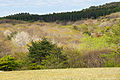 Mineyama Highland in Kamikawa Hyogo pref01bs3200.jpg