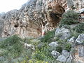 Misliya Cave.JPG