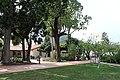 Mission San Luis Obispo de Tolosa, CA USA - panoramio (20).jpg