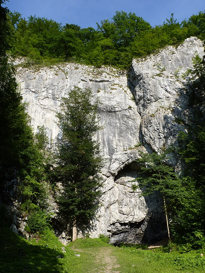 Býčí skála Cave