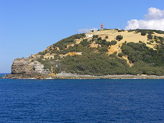 Cape Moreton - Cape Moreton from sea