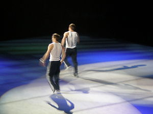Morgan Hamm - Morgan and his twin-brother Paul performing in 2008 on The Tour of Gymnastics Superstars