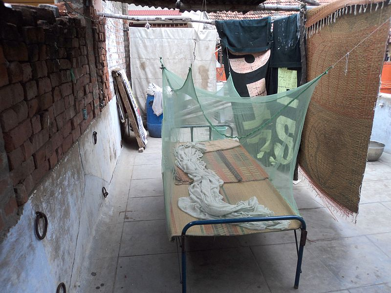 File:Mosquito,net,TamilNadu403.JPG