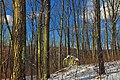 Mount Yeager Hike (3) (8418228947).jpg