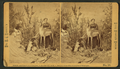 """Mrs. M. A. Maxwell and some of the animals in her """"Rocky Mountain Museum."""", from Robert N. Dennis collection of stereoscopic views.png"""