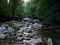 Mumlava, nedaleko pod Mumlavským vodopádem.jpg