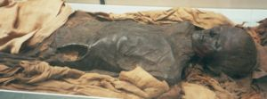 A mummy in the British Museum.