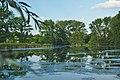 Národní přírodní památka Hrdibořické rybníky - rybník Husák, Hrdibořice, okres Prostějov (02).jpg