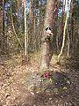 Nadrzewna kapliczka w lesie.jpg