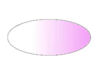 Drosophila embryogenesis - Image: Nanos gradient