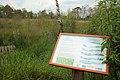 Nationaal park De Groote Peel 08.jpg