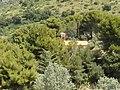 Nature - Natura (14702497165).jpg