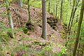 Naturschutzgebiet Bärentobel.jpg