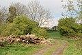Near High Clays Farm - geograph.org.uk - 1277027.jpg