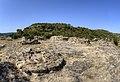 Necrópolis ibérica El Cascarujo (37251616322).jpg