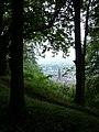 Neuburg, Freiburg im Breisgau, Germany - panoramio (2).jpg