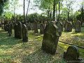 Neudenau-judenfriedhof3.jpg