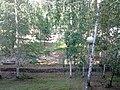 Nevyanskiy r-n, Sverdlovskaya oblast', Russia - panoramio (44).jpg