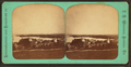 Newport from Prospect Hill, by Webster, J. N. (Joseph N.), 1838-1920.png