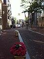 NieuweAmstelstraat2.jpg