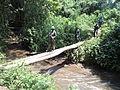 Nord-Kivu, RD Congo, 05 février 2015 - Patrouille conjointe MONUSCO et FARDC dans la forêt de Kahumiro. (16523799991).jpg