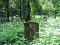 Nowy Cmentarz Zydowski - Przemysl14.jpg
