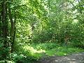 Nowy Sącz, teren skansenu (Sądecki Park Etnograficzny) 17.JPG