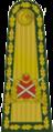 OF-10 Mareşal.png