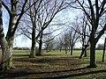 Oak Road Playing Fields - geograph.org.uk - 745332.jpg