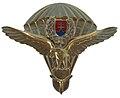 Odznak padakovy odbornik vzdusnych sil SR.jpg
