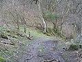 Offas Dyke LDP near Crogen Wladys - geograph.org.uk - 359638.jpg