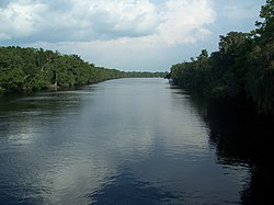 Old Town Nature Coast Trail SP Suwannee south02.jpg