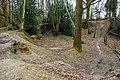 Old pit, Hempstead Wood - geograph.org.uk - 1751360.jpg